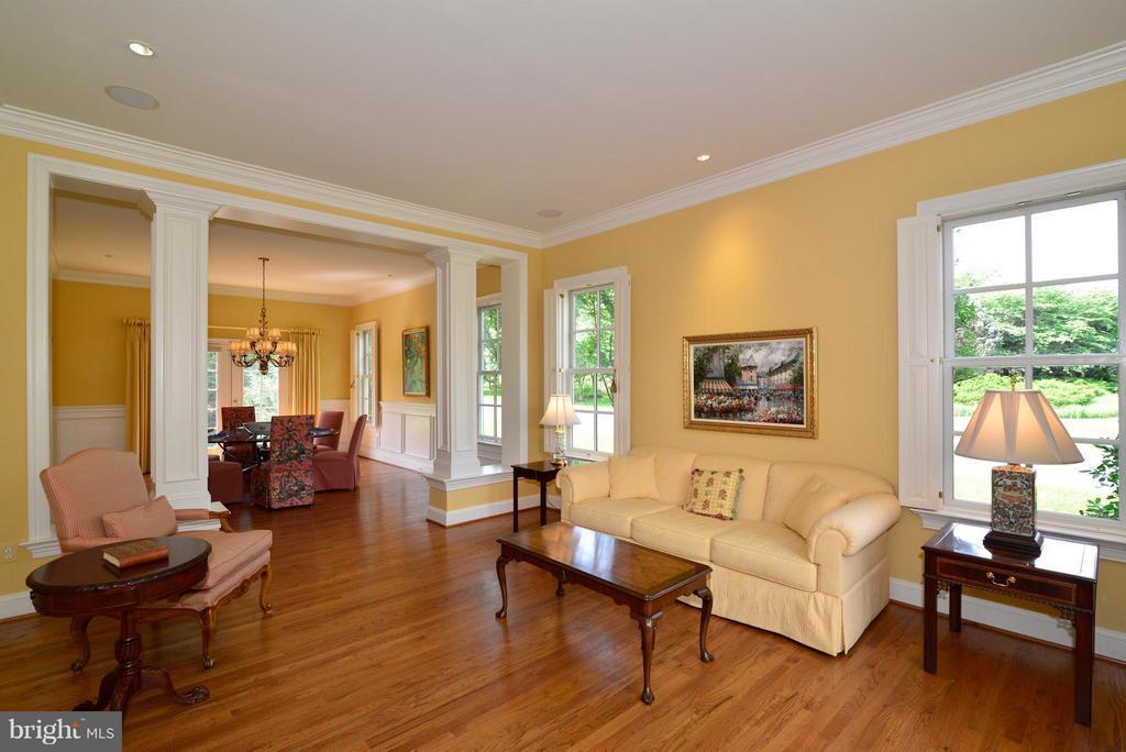 Formal living room - 41707 PUTTERS GREEN CT, LEESBURG