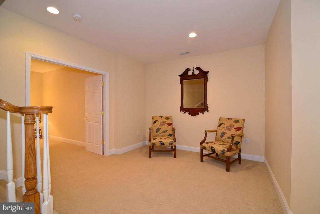 Fully finished basement - 41707 PUTTERS GREEN CT, LEESBURG