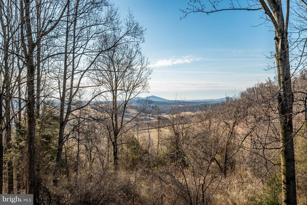 Gorgeous Views are largely protected ! - 23 FISHHAWK PASS LN, FLINT HILL