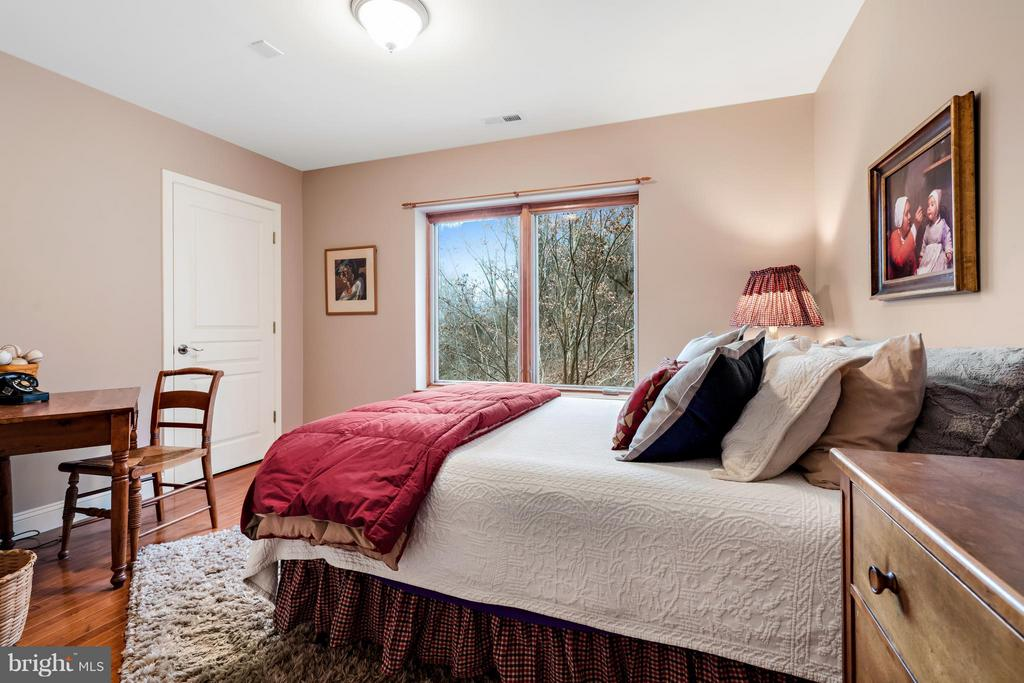 Bedrooms each have a walk in closet & a view - 23 FISHHAWK PASS LN, FLINT HILL
