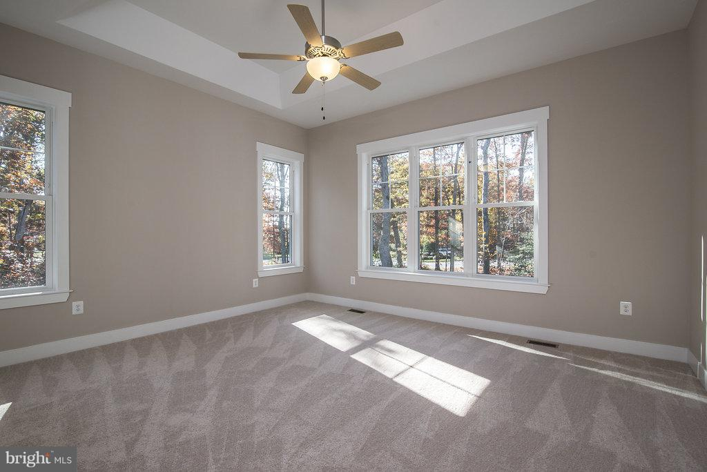 Owners Bedroom with Box Ceiling - 10918 COBBLE RUN, SPOTSYLVANIA
