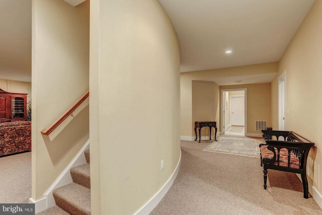 Finished Lower Level - 12717 HARPERS FERRY RD, PURCELLVILLE