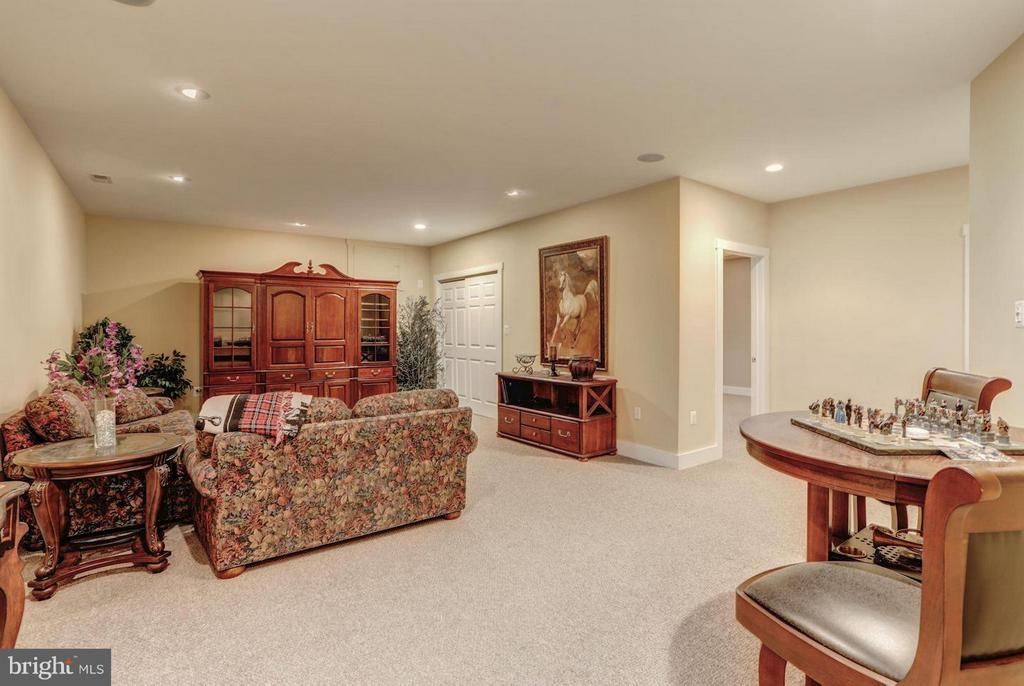 Large & Comfortable Recreation Room - 12717 HARPERS FERRY RD, PURCELLVILLE