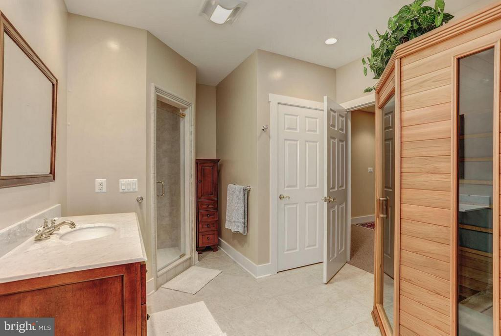 Basement Bath with Sauna - 12717 HARPERS FERRY RD, PURCELLVILLE