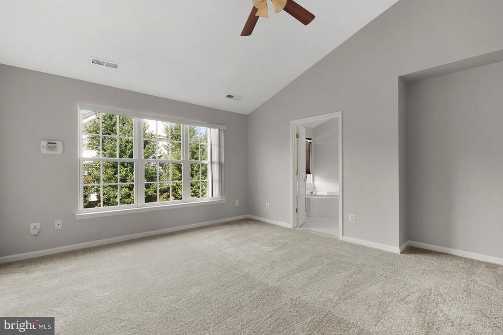 Vaulted Ceiling and Large Windows in Master BDRM! - 24643 CLOCK TOWER SQ, ALDIE
