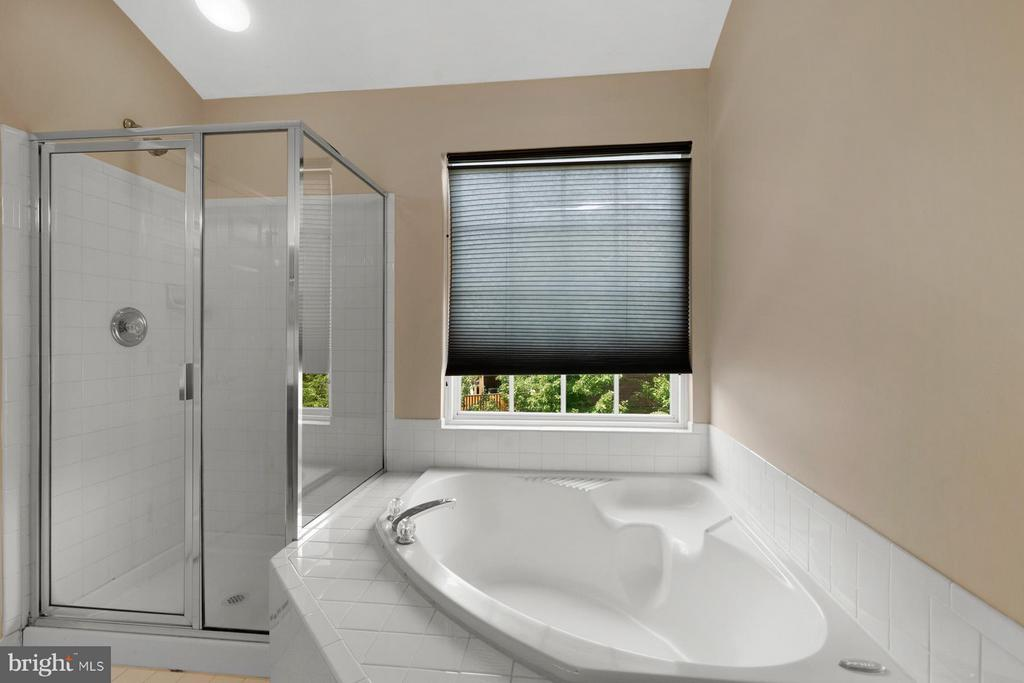 Large Soaking tub and Sep Shower - 24643 CLOCK TOWER SQ, ALDIE