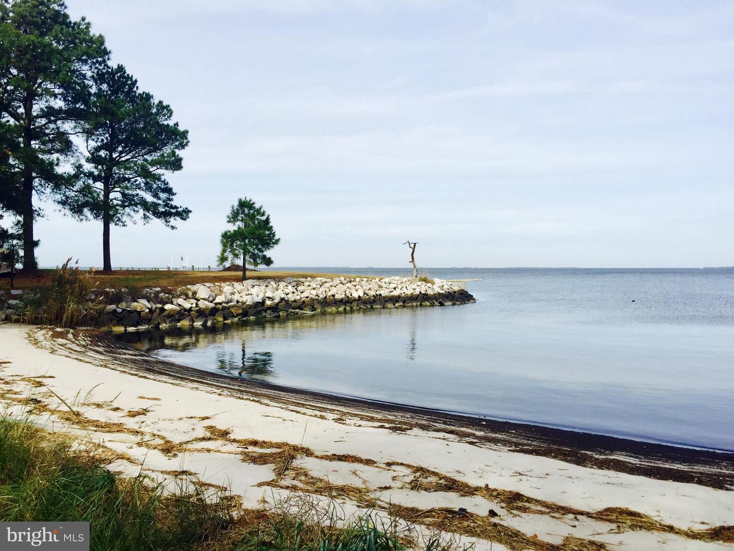 Land for Sale at Deal Island, Maryland 21821 United States