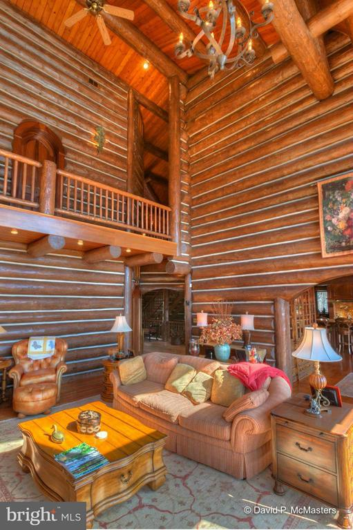 30' BEAMED + VAULTED CEILING. - 610 PIN OAK RD, PAW PAW