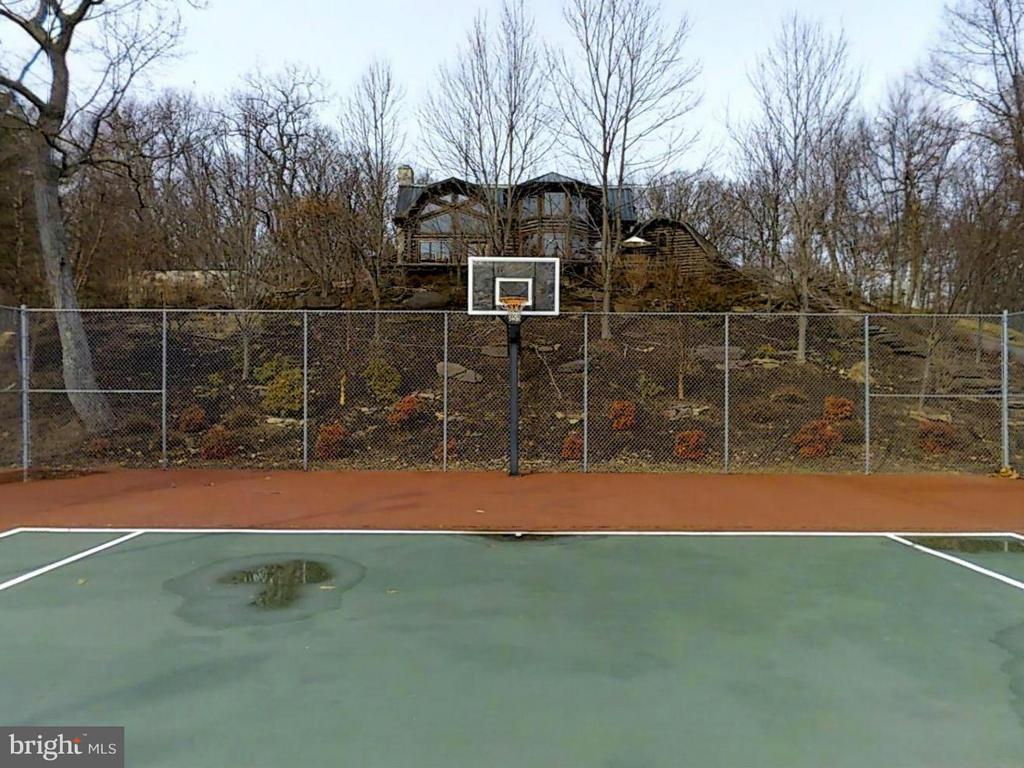 TENNIS COURT HAS LIGHTS AND A PHONE - 610 PIN OAK RD, PAW PAW