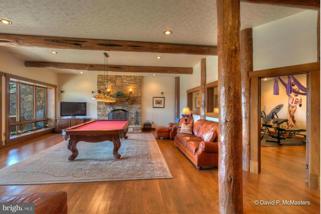 LOWER LEVEL FAMILY/GAME ROOM. WOOD FP - 610 PIN OAK RD, PAW PAW