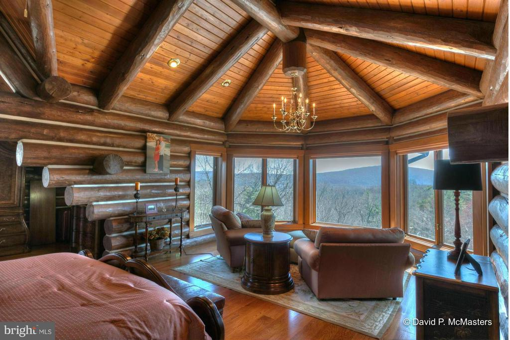 MASTER BR. FASCINATING ARCHTECTURE, GREAT VIEWS - 610 PIN OAK RD, PAW PAW