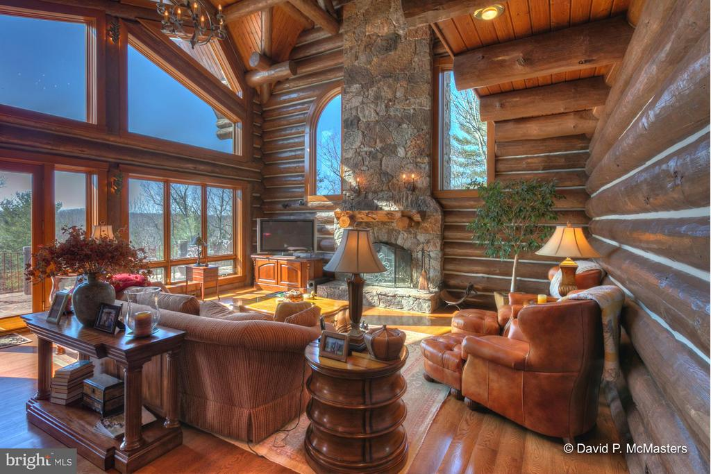 HUGE LR WITH CUSTOM FIREPLACE, WALL OF GLASS - 610 PIN OAK RD, PAW PAW