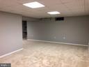Lower Level Family Room - 9 BURNS RD, STAFFORD