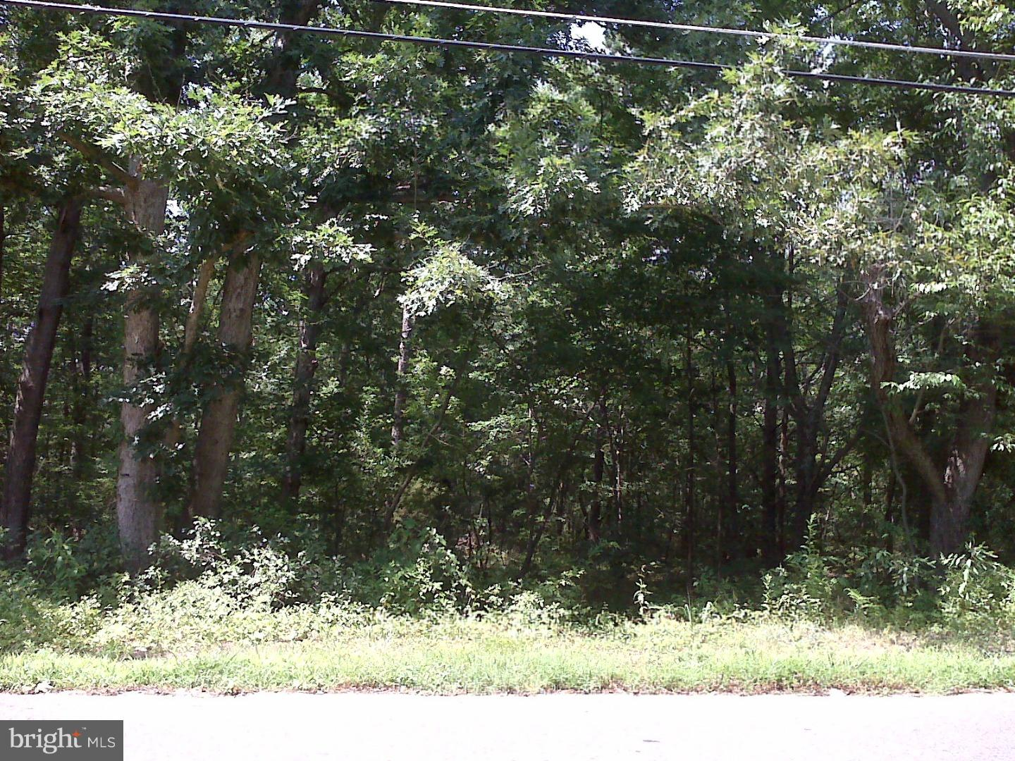 Land for Sale at 1356 BROWN Road Vineland, New Jersey 08344 United States