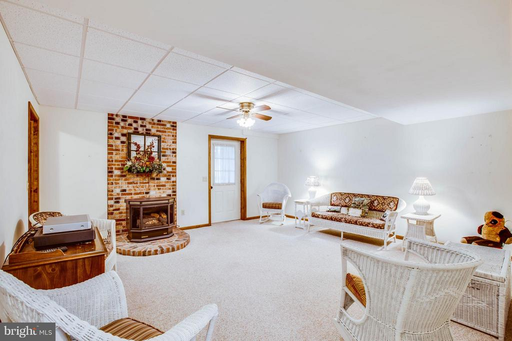 2nd Family Room in basement w/Fireplace - 303 GOLD VALLEY RD, LOCUST GROVE