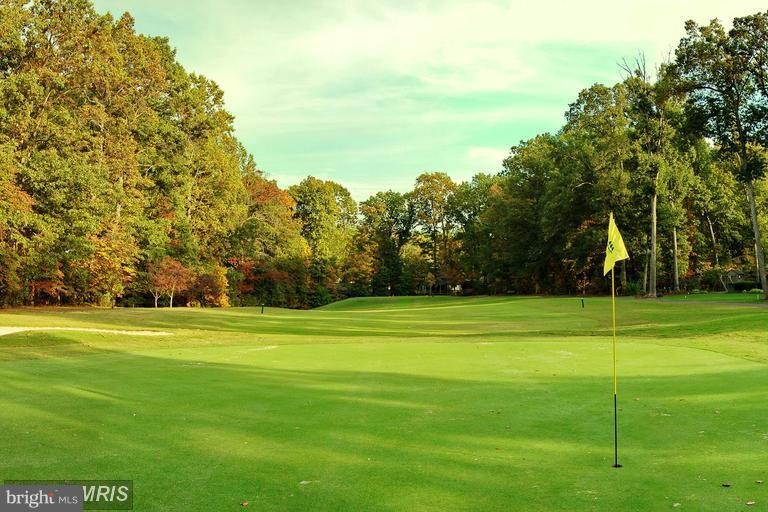 18 hole Challenging Course here! - 117 EDGEHILL DR, LOCUST GROVE