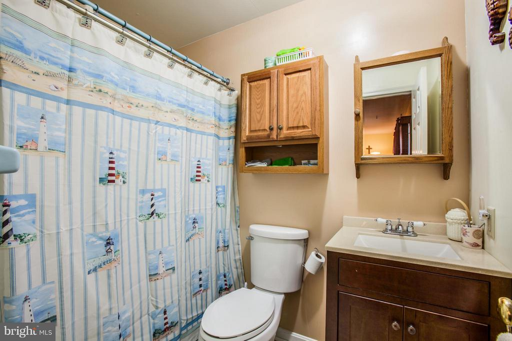 Bath (Master) - 103 BURGESS MILL CT, LOCUST GROVE