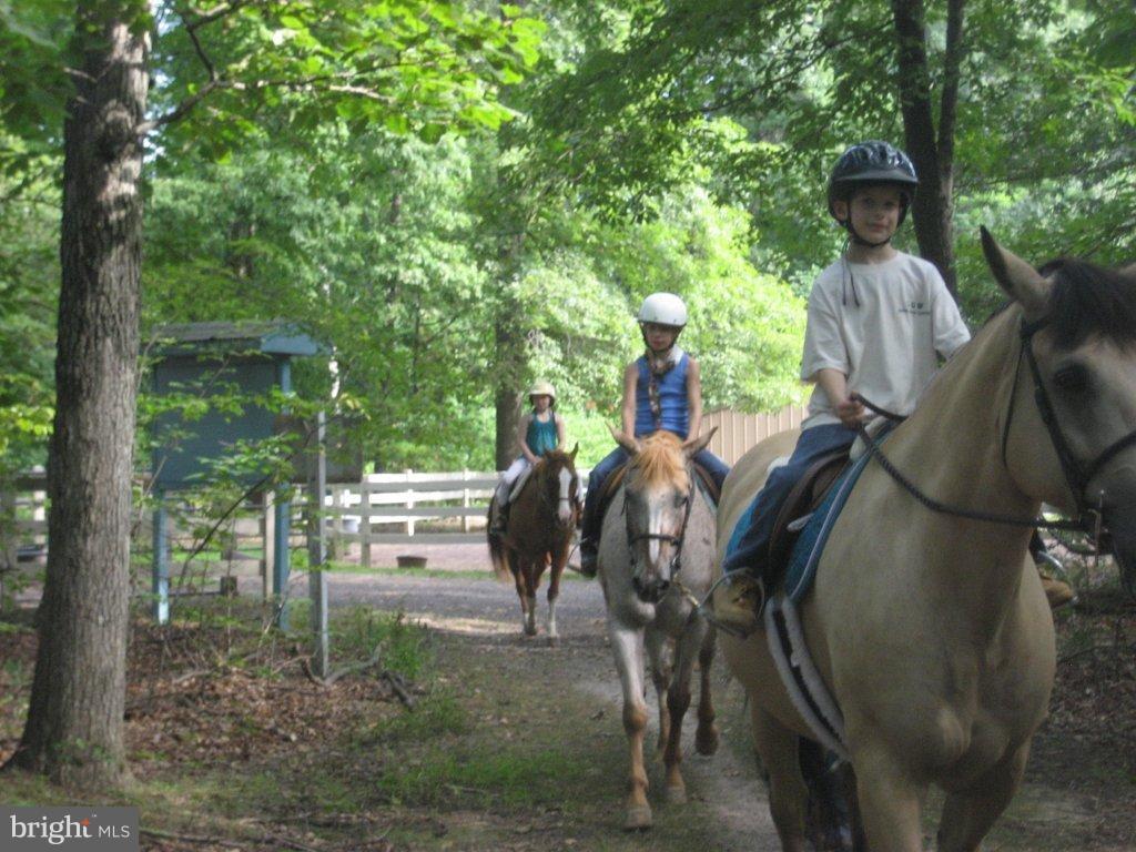 Equestrian Center - 200 LIBERTY BLVD, LOCUST GROVE