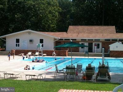 2 outdoor pools - 200 LIBERTY BLVD, LOCUST GROVE