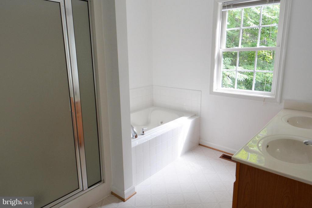 Master Bath - 307 STRATFORD CIR, LOCUST GROVE