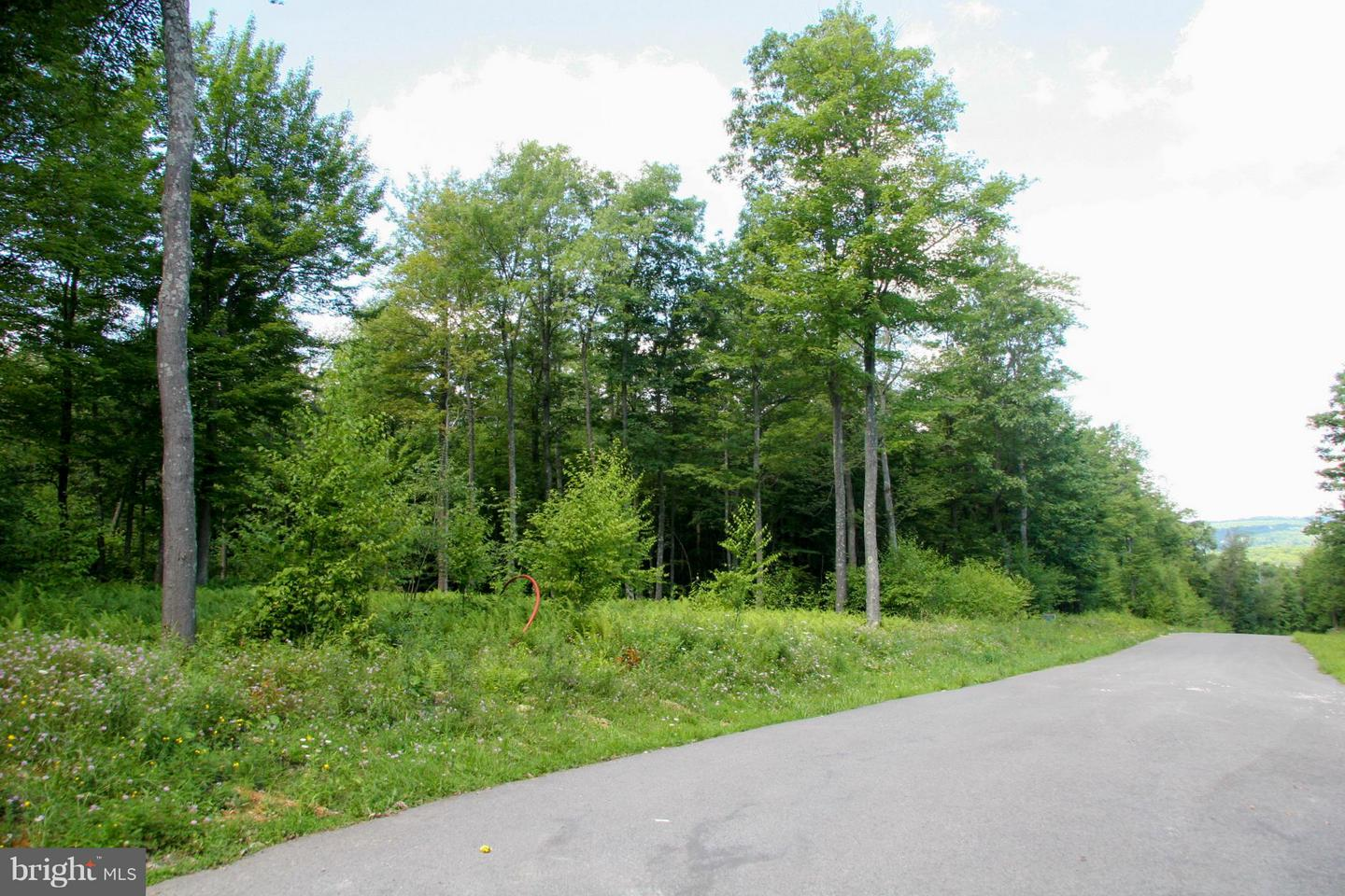 Land for Sale at Tarn Dr Oakland, Maryland 21550 United States