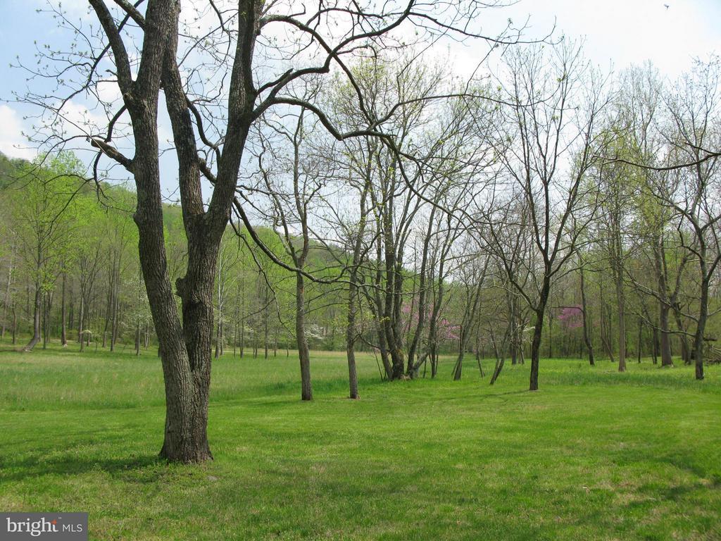 Grounds - 396 KEYSER RUN RD, WASHINGTON