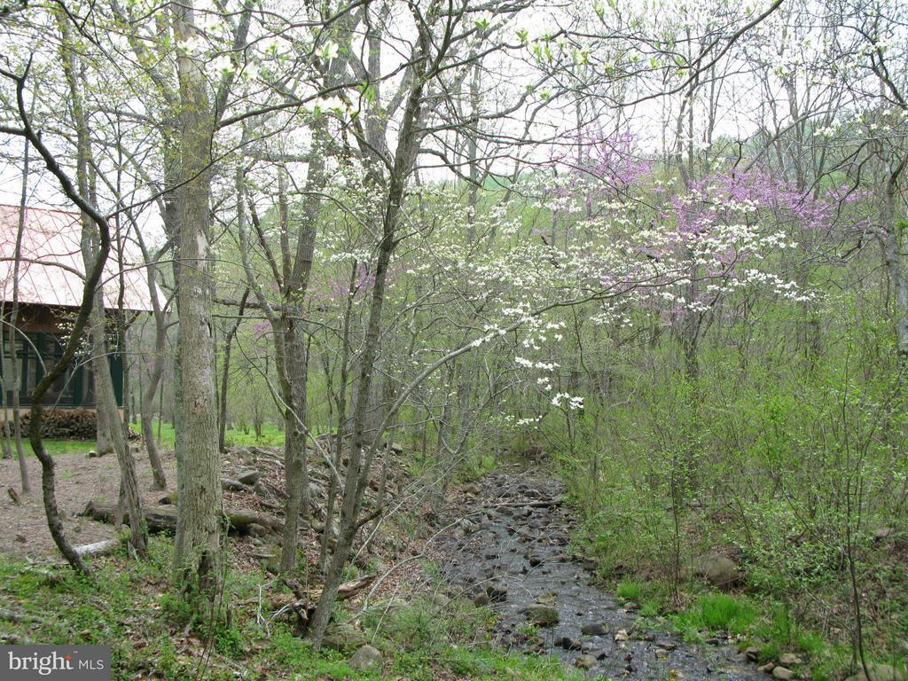 Stream by house - 396 KEYSER RUN RD, WASHINGTON