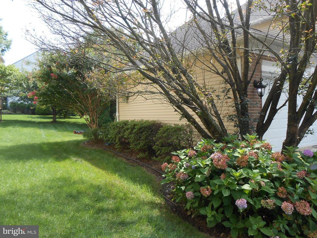 Lush Tress, Shrubs, Flowers - 10210 BENS WAY, MANASSAS