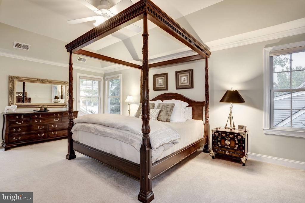 Luxurious master suite. - 1956 VERMONT ST N, ARLINGTON