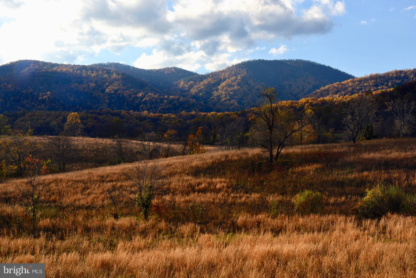 Land for Sale at F.T. Valley Rd Sperryville, Virginia 22740 United States