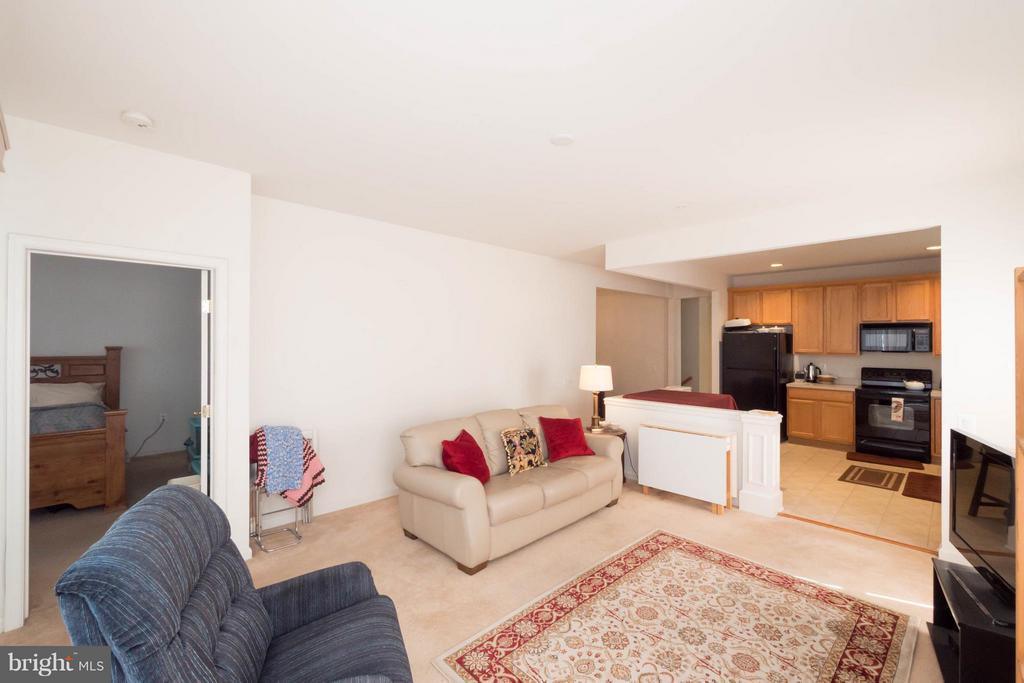 Living Room - 66 ASPEN HILL DR #66, FREDERICKSBURG