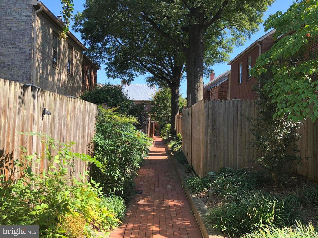 Courtyard Path To Pool and Tennis Court - 223 PRINCESS ST, ALEXANDRIA