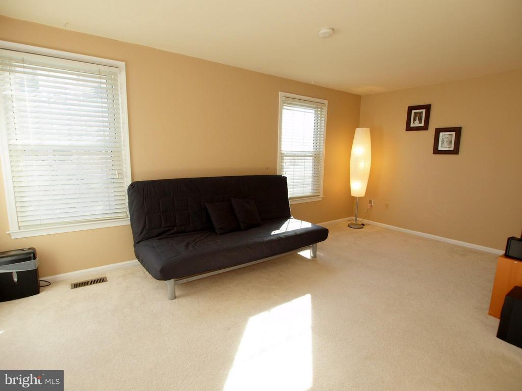 And it gets lots of natural light! - 14388 HAVENER HOUSE CT, CENTREVILLE