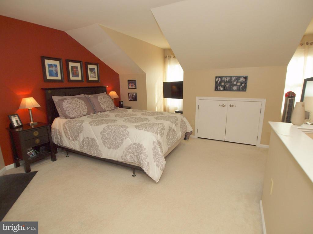 Top level master bedroom - 14388 HAVENER HOUSE CT, CENTREVILLE