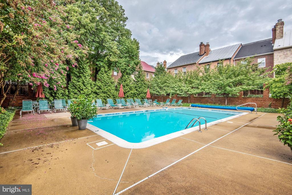 Wonderful Community Pool - 223 PRINCESS ST, ALEXANDRIA