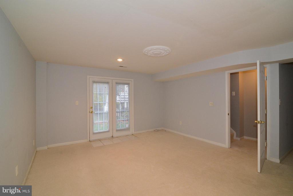 Lower level family room - 21934 WINDOVER DR, BROADLANDS