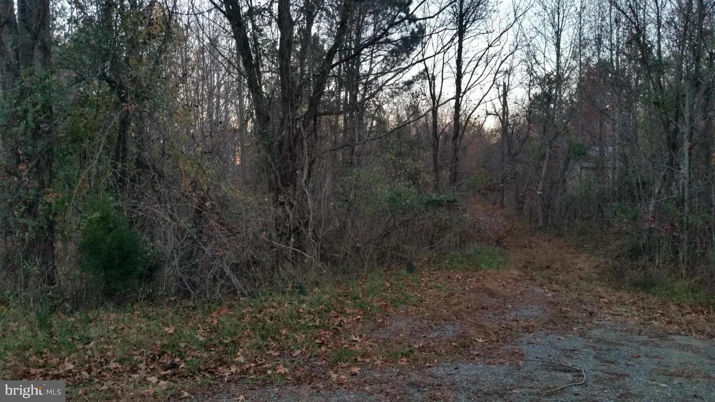 Land for Sale at Weeks Rd Montross, Virginia 22520 United States