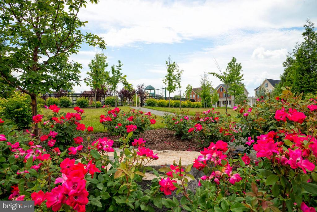 Community Parks & Tot Lots - 43021 GREGGSVILLE CHAPEL TER #107, ASHBURN