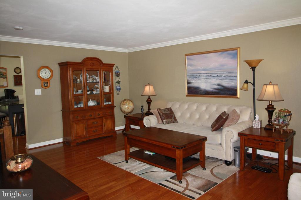 Living Room - 14524 BATTERY RIDGE LN, CENTREVILLE