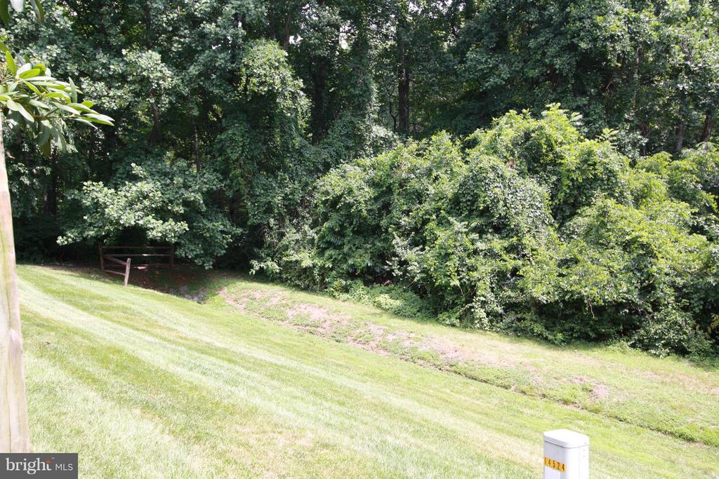 View - 14524 BATTERY RIDGE LN, CENTREVILLE