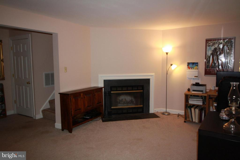 Basement - 14524 BATTERY RIDGE LN, CENTREVILLE