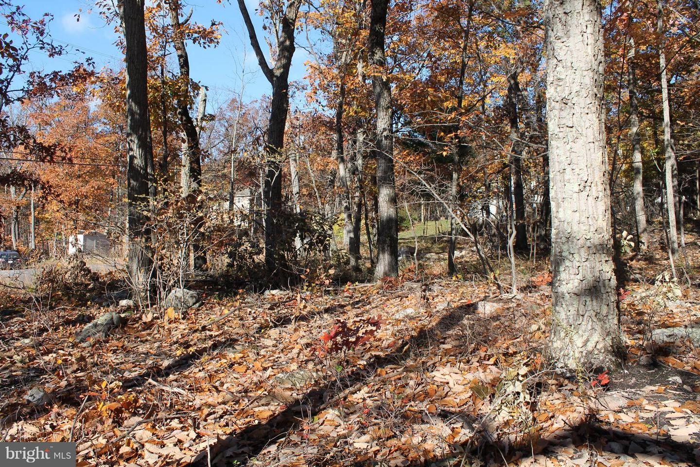 Land for Sale at Not On File Winchester, Virginia 22602 United States