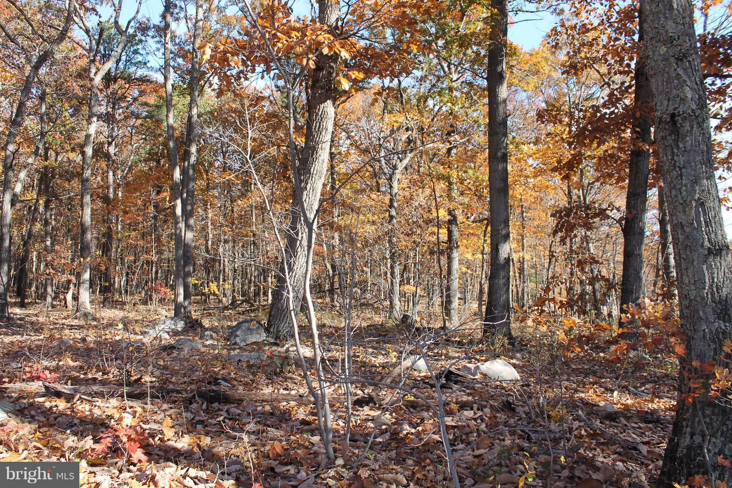 Additional photo for property listing at Not On File  Winchester, Virginia 22602 United States