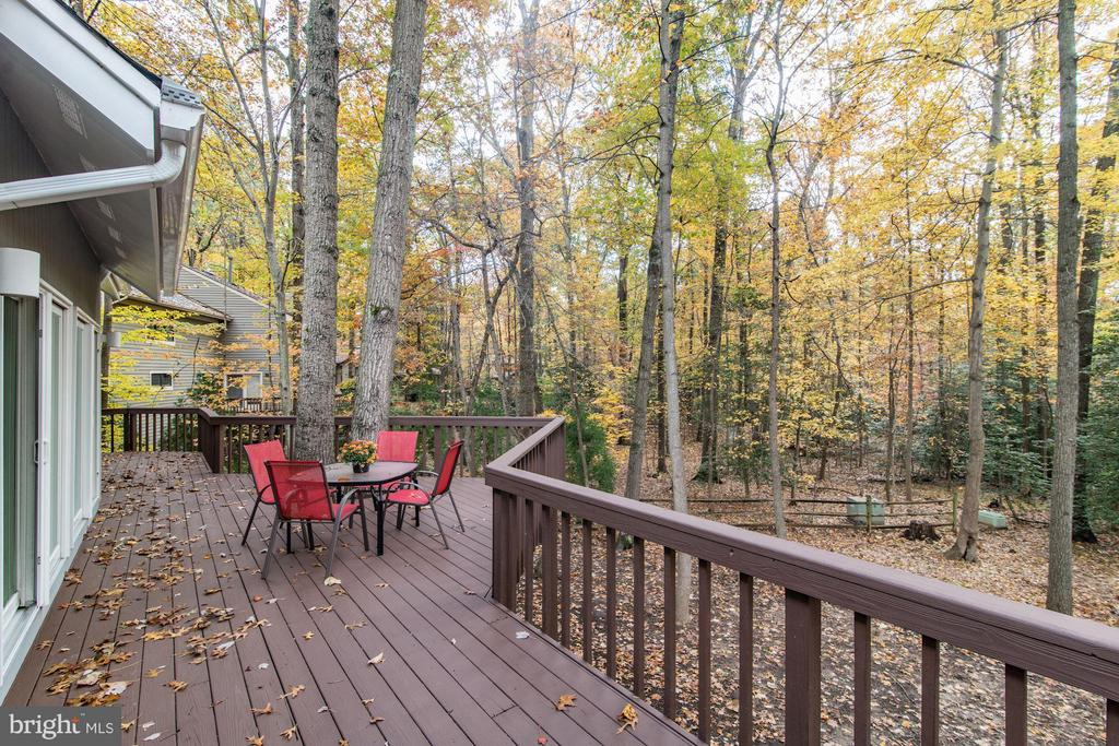 Elevated deck can only be accessed from the house - 11903 TRIPLE CROWN RD, RESTON