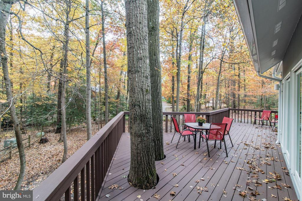 Deck access from kitchen, dining room & Master - 11903 TRIPLE CROWN RD, RESTON