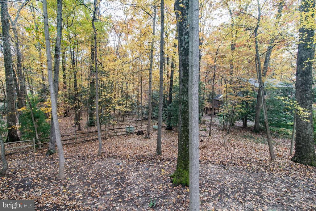 Views of back yard from the elevated deck - 11903 TRIPLE CROWN RD, RESTON