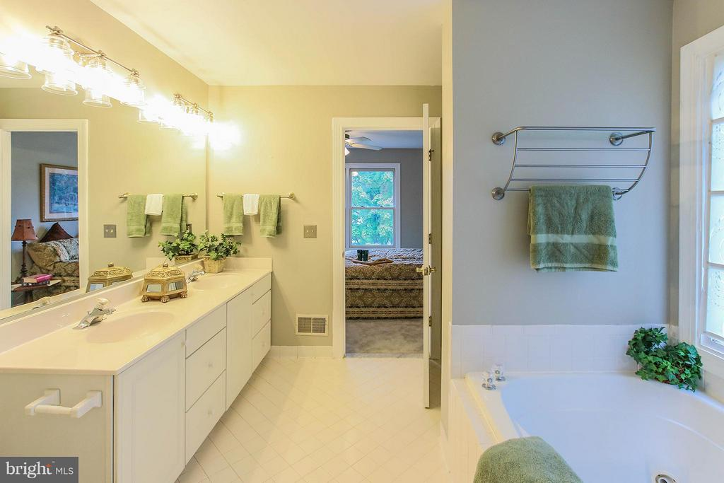 Bath (Master) - 43956 BRUCETON MILLS CIR, ASHBURN