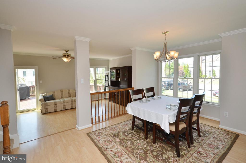 Plenty of Natural Light in the Dining Room - 44067 LACEYVILLE TER, ASHBURN