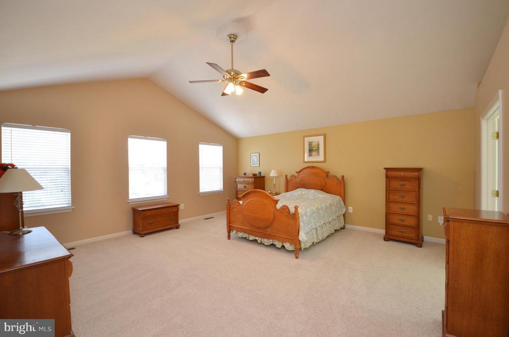 Spacious Master Bedroom - 20532 DEERWATCH PL, ASHBURN