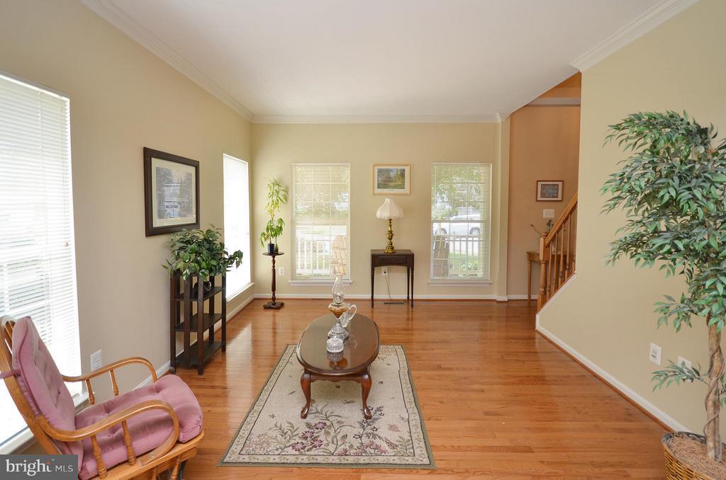 Living Room with Ample Lighting - 20532 DEERWATCH PL, ASHBURN